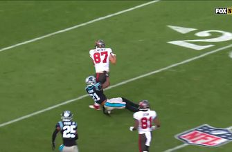 Rob Gronkowski shrugs off defender and sets up a gorgeous Mike Evans toe-tap TD catch