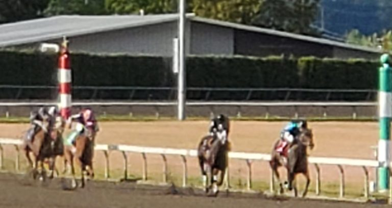 Emerald Downs 25th year Opens with 2 Days of Racing and Fans