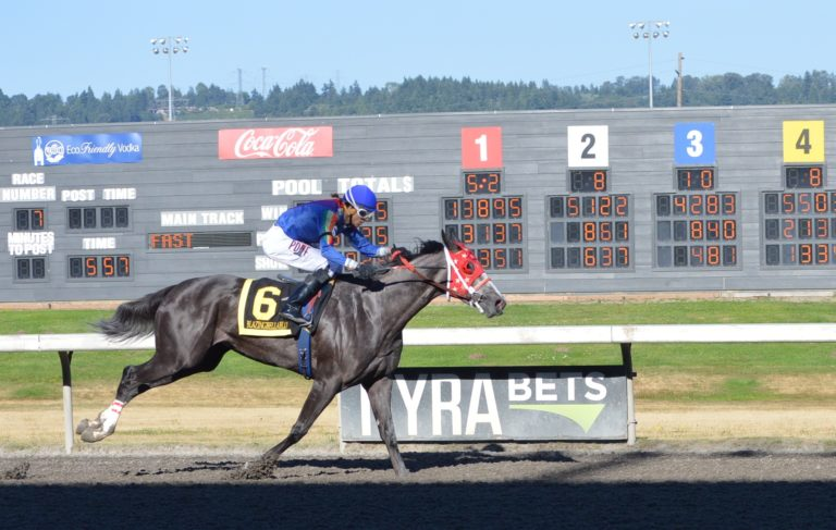 Emerald Downs: Week 11 Champs crowned in the Kent & Irish Day Stakes, the Ladies dominate Saturday and some big pays and more